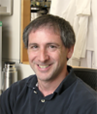 Alberto Bartesaghi, Associate Professor of Computer Science & Biochemistry, Duke University